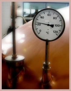 temperatura fermentacion ales